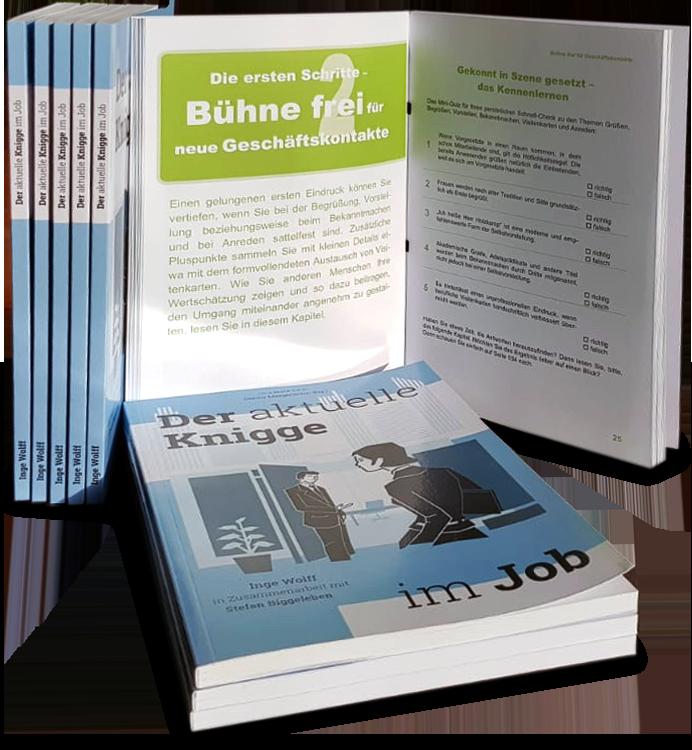 Buch Knigge im Job Inge Wolff, Stefan Biggeleben